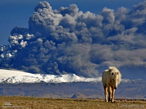 Year 2011 Top Photographs By National Geographic 075